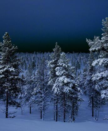 finland_1651